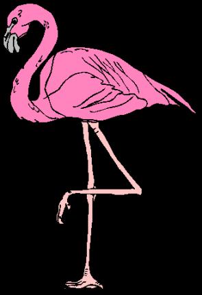 flamingotrad